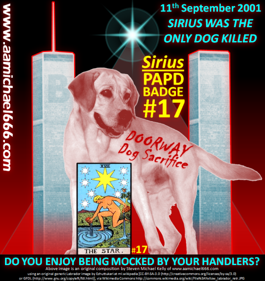 Sirius PAPD Police Dog Number 17-Tarot The Star 17-MH17-Heliacal Rising of Sirius